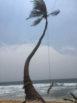 Getting tattoos and swinging in palmtrees